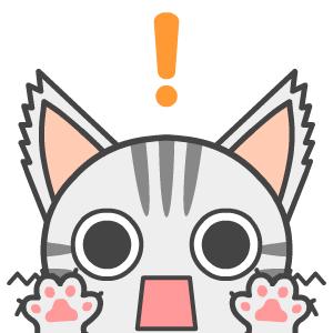 surprisedcat
